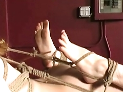 Natali demore as slave tied hard milf redhead forced to cum hardcore